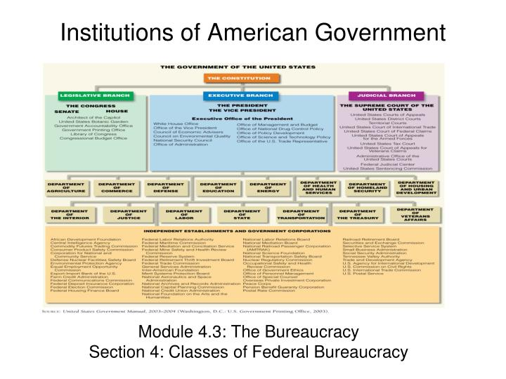 government institution essay