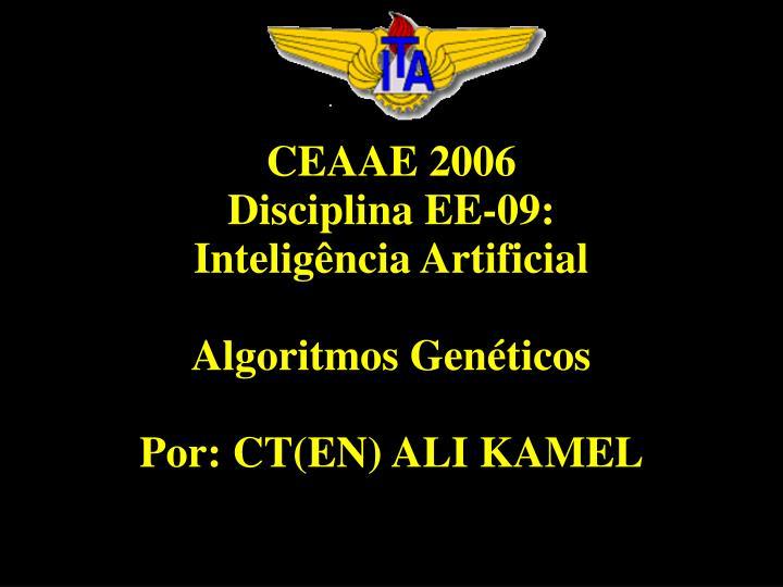 CEAAE 2006