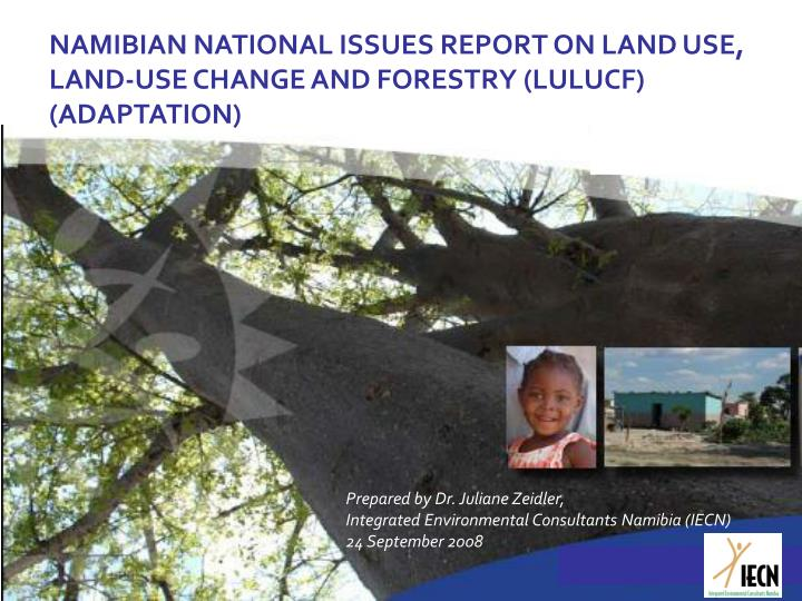 NAMIBIAN NATIONAL ISSUES REPORT ON LAND USE, LAND-USE CHANGE AND FORESTRY (LULUCF) (ADAPTATION)
