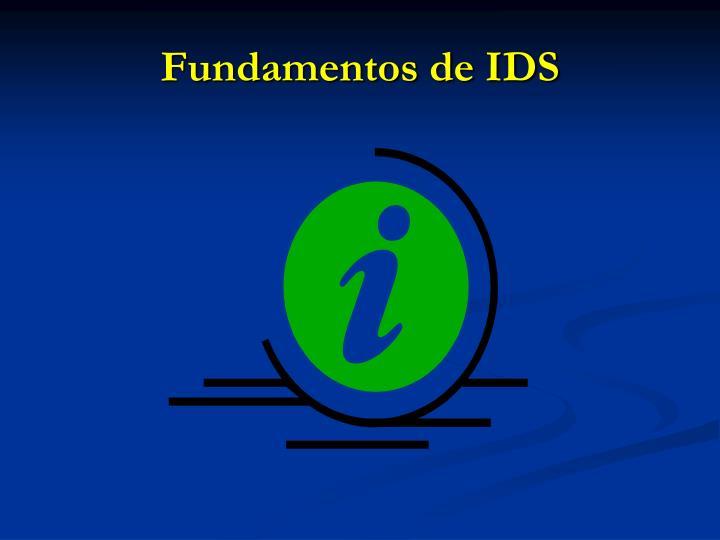 Fundamentos de IDS
