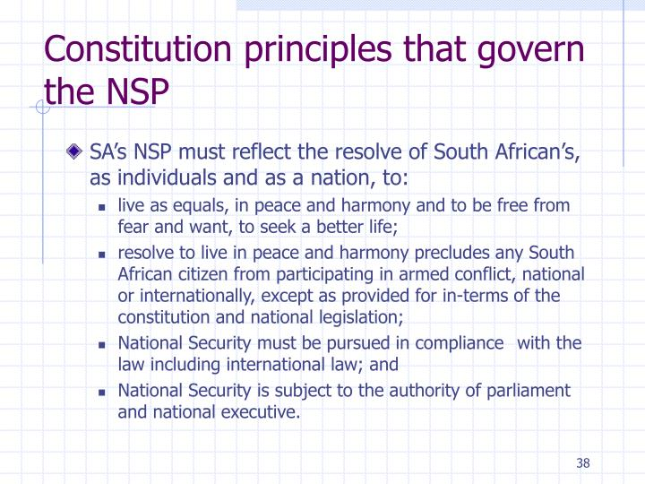 Constitution principles that govern the NSP