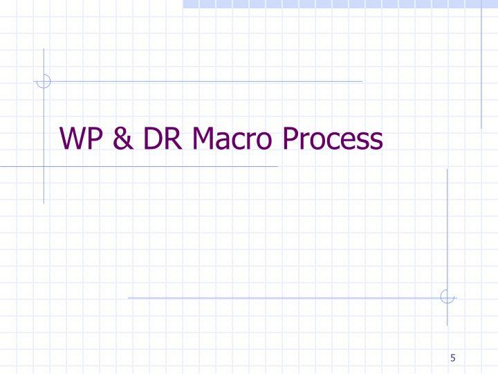WP & DR Macro Process