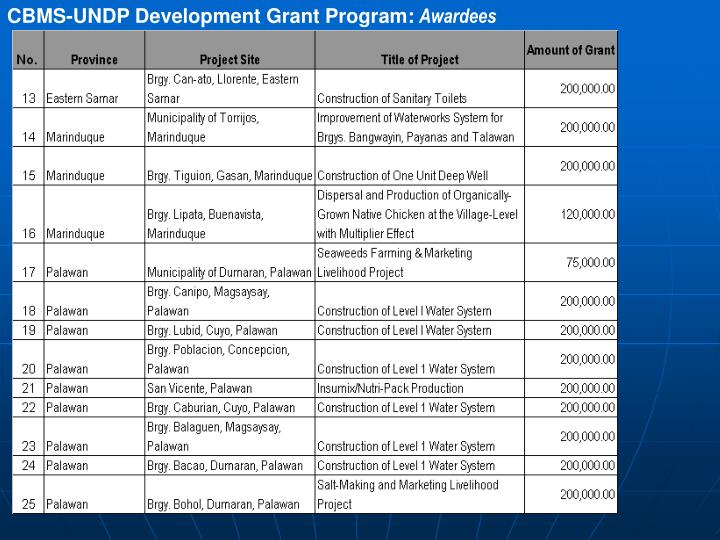CBMS-UNDP Development Grant Program: