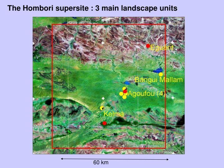 The Hombori supersite : 3 main landscape units