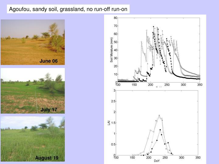 Agoufou, sandy soil, grassland, no run-off run-on