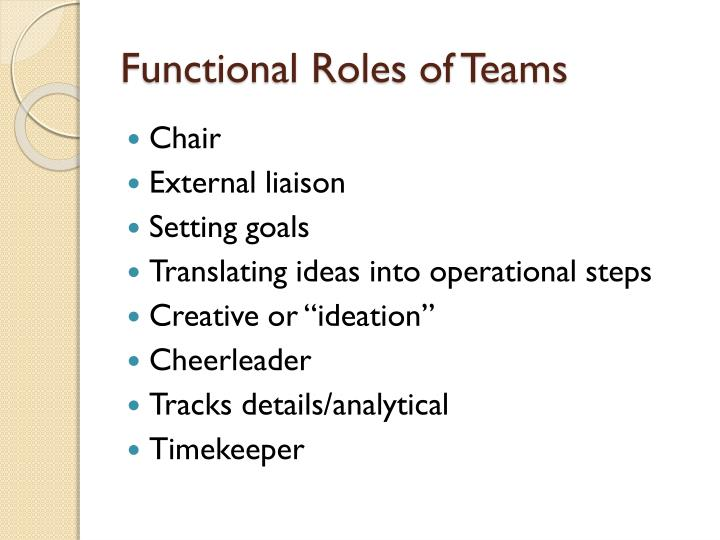 Functional Roles of Teams