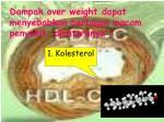 dampak over weight dapat menyebabkan berbagai macam penyakit diantaranya