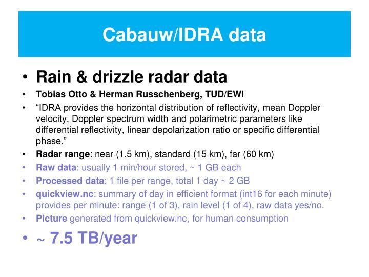 Cabauw/IDRA data
