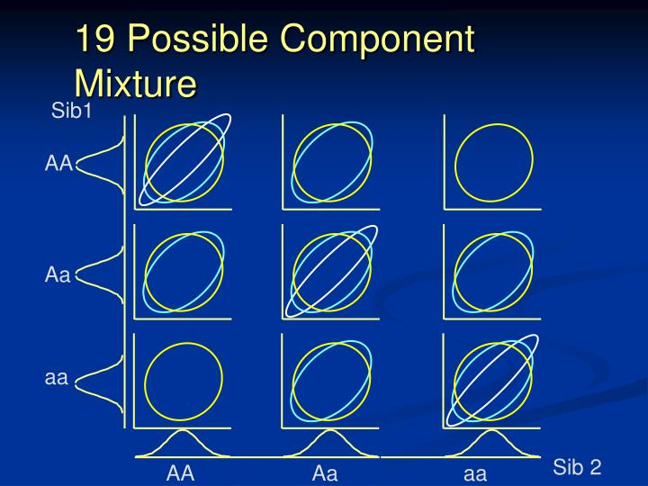 19 Possible Component Mixture