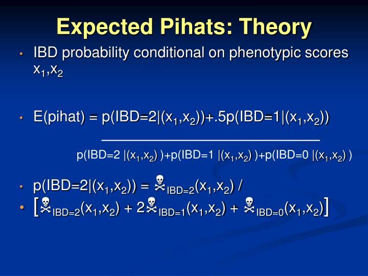 Expected Pihats: Theory