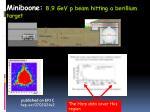 miniboone 8 9 gev p beam hitting a berillium target