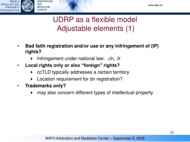 UDRP as a flexible model