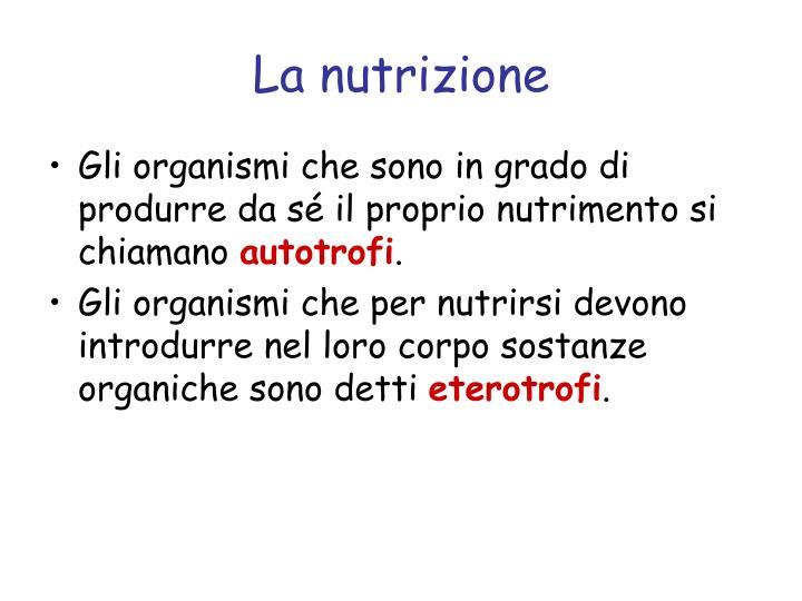 La nutrizione