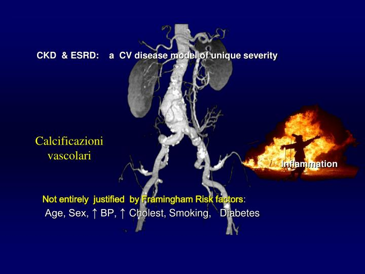 CKD  & ESRD:    a  CV disease model of unique severity