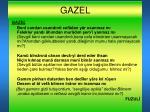 gazel1