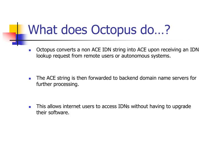 What does Octopus do…?
