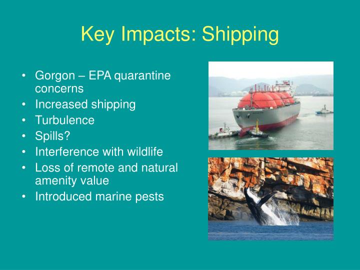 Key Impacts: Shipping