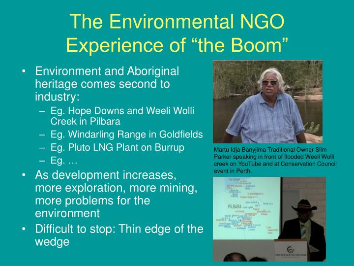 "The Environmental NGO Experience of ""the Boom"""