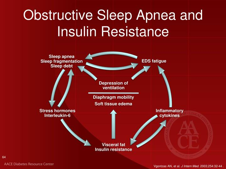 Obstructive Sleep Apnea and Insulin Resistance