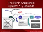 the renin angiotensin system at 1 blockade