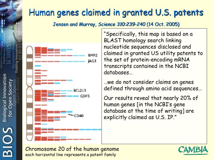 Human genes claimed in granted u s patents jensen and murray science 310 239 240 14 oct 2005