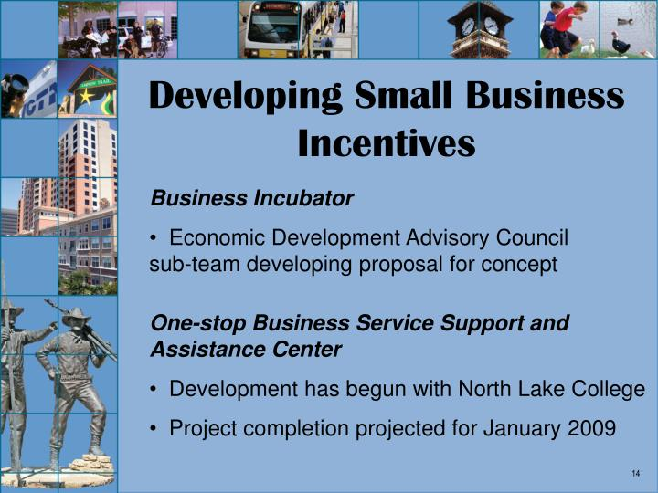 Developing Small Business Incentives