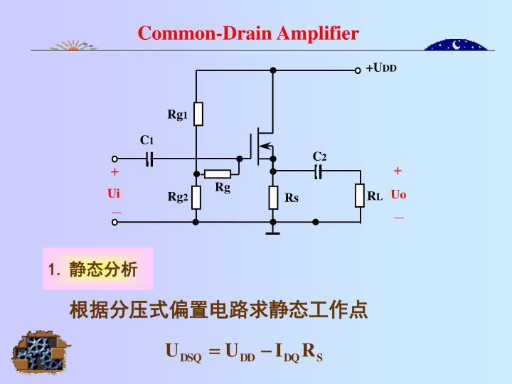Common-Drain Amplifier