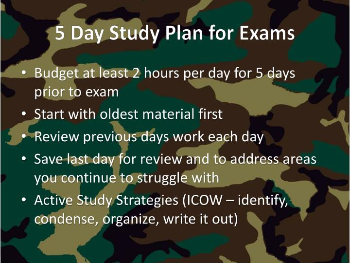 5 Day Study Plan for Exams