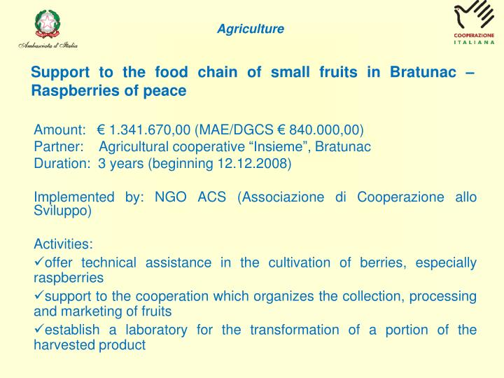 Support to the food chain of small fruits in Bratunac – Raspberries of peace