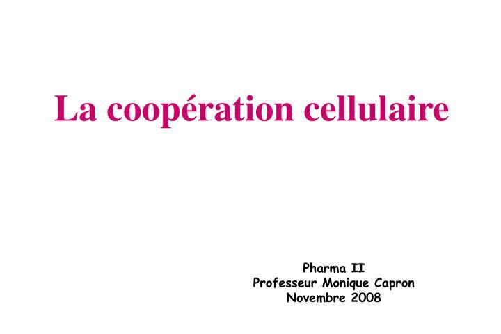 La coopération cellulaire