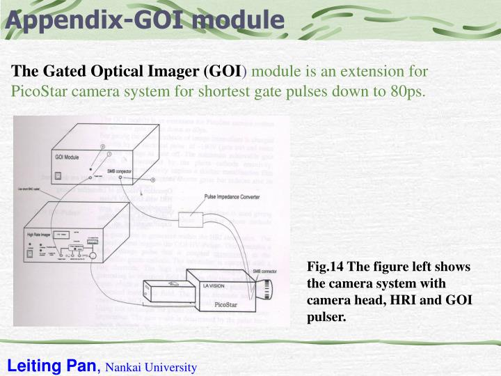 Appendix-GOI module