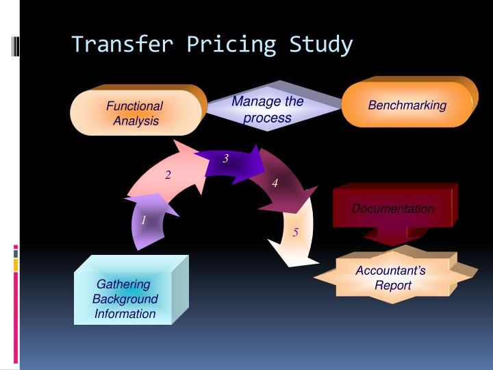 Transfer Pricing Study