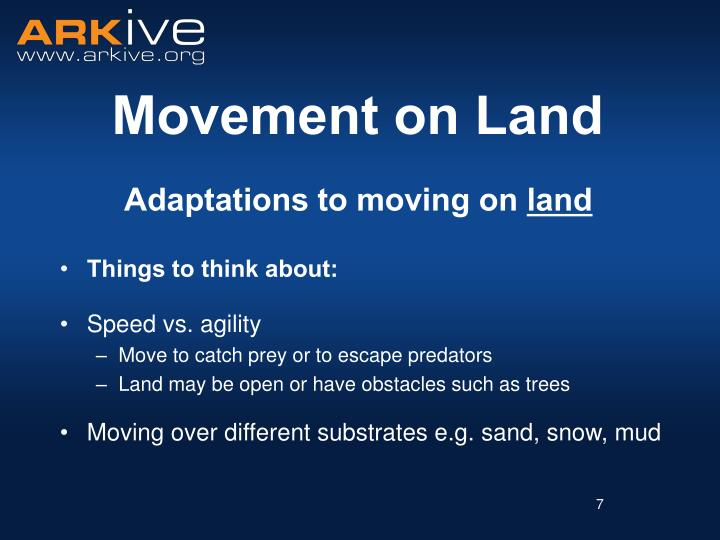 Adaptations to moving on