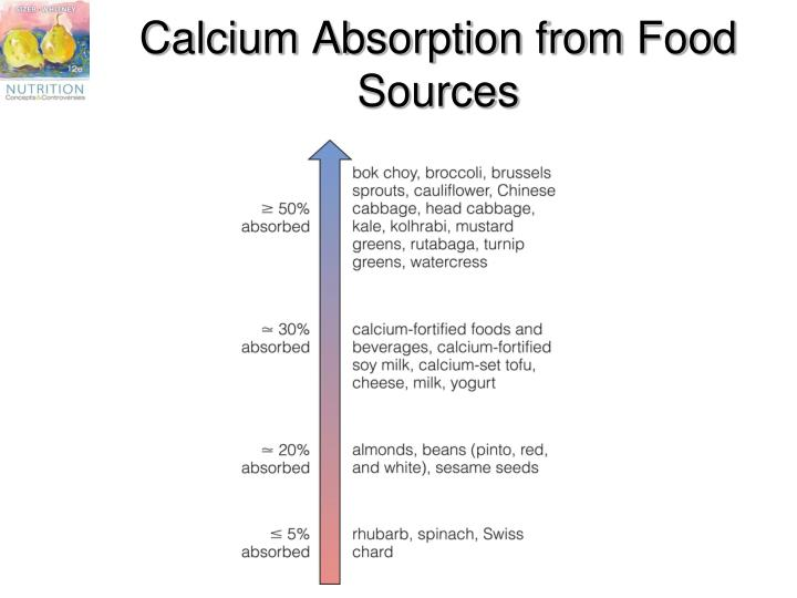 Calcium Absorption from Food Sources