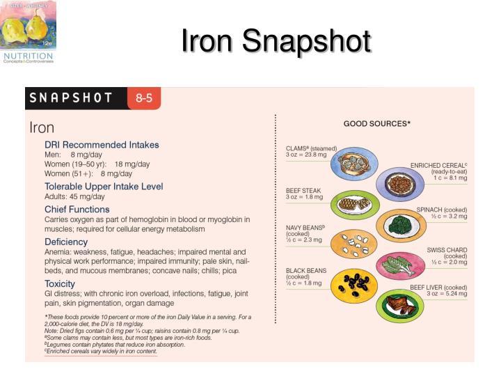 Iron Snapshot
