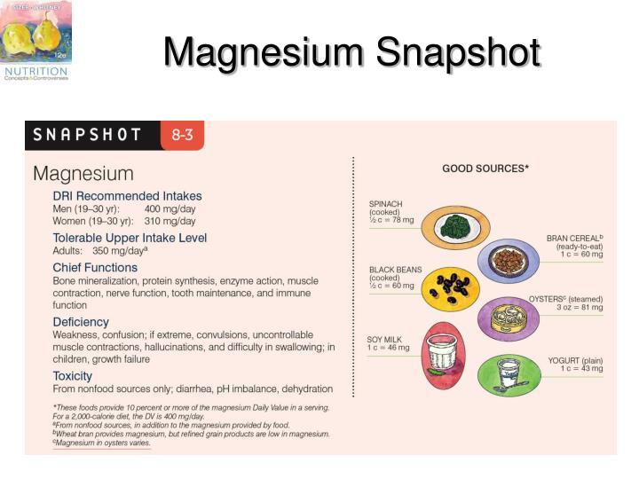 Magnesium Snapshot