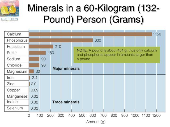 Minerals in a 60-Kilogram (132-Pound) Person (Grams)