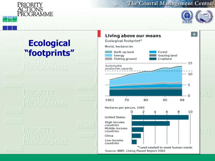 "Ecological ""footprints"""