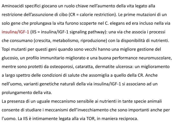 Aminoacidi specifici giocano un ruolo chiave nell'aumento della vita legato alla restrizione dell'assunzione di cibo (CR = calorie