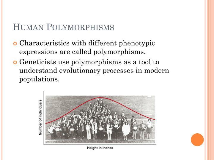 Human Polymorphisms