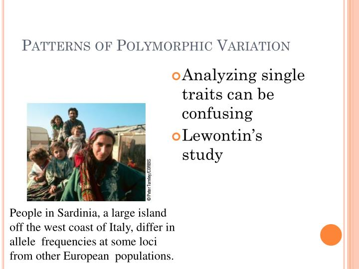 Patterns of Polymorphic Variation
