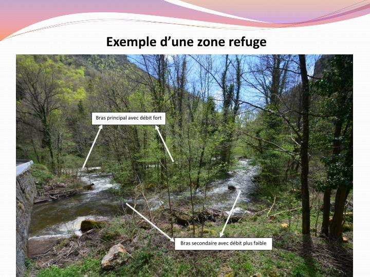 Exemple d'une zone refuge