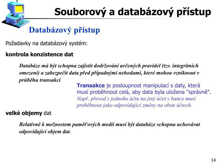 Databázový přístup