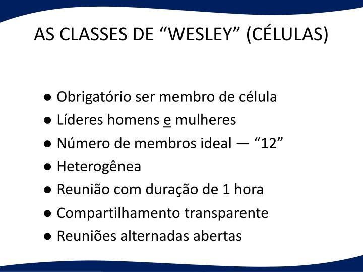 """AS CLASSES DE """"WESLEY"""" (CÉLULAS)"""