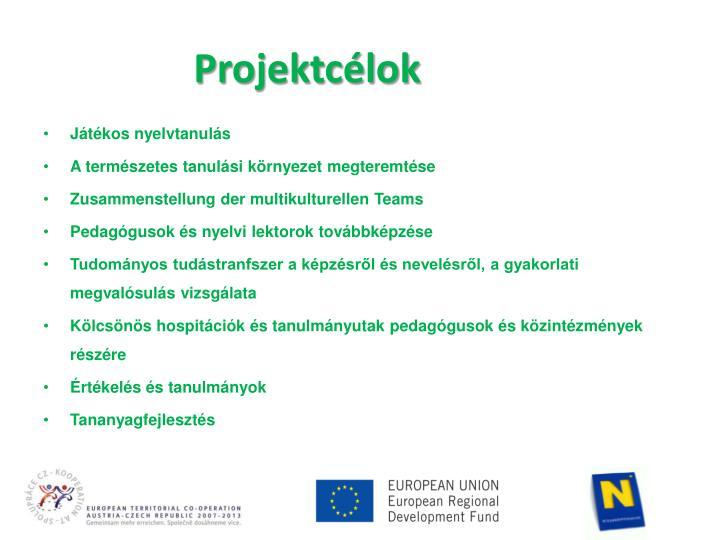 Projektcélok