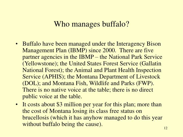 Who manages buffalo?