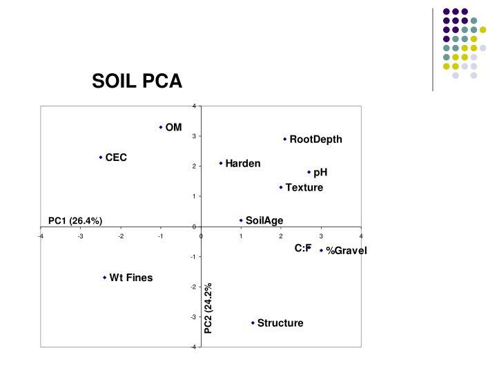 SOIL PCA