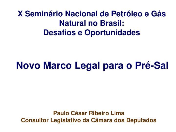 X Seminário Nacional de Petróleo e Gás Natural no Brasil: