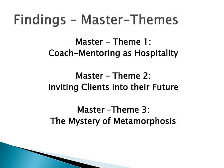 Findings – Master-Themes