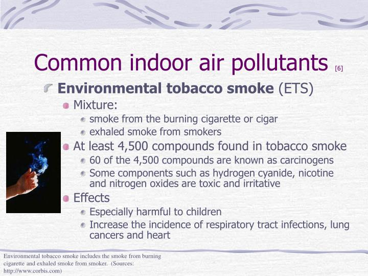 Common indoor air pollutants